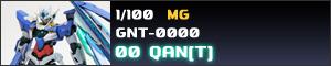 GNT-0000 00 QAN[T]